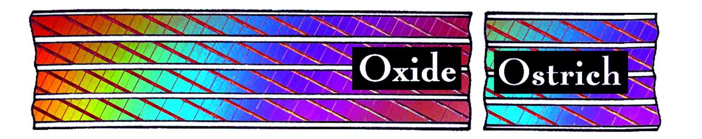 Oxide Ostrich